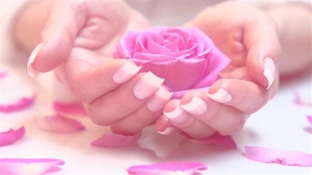 Amica rosa: la regina dei fiori è davvero preziosa