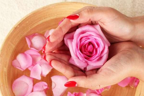 Rose e petali