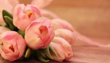 La cura floreale degli spazi di casa