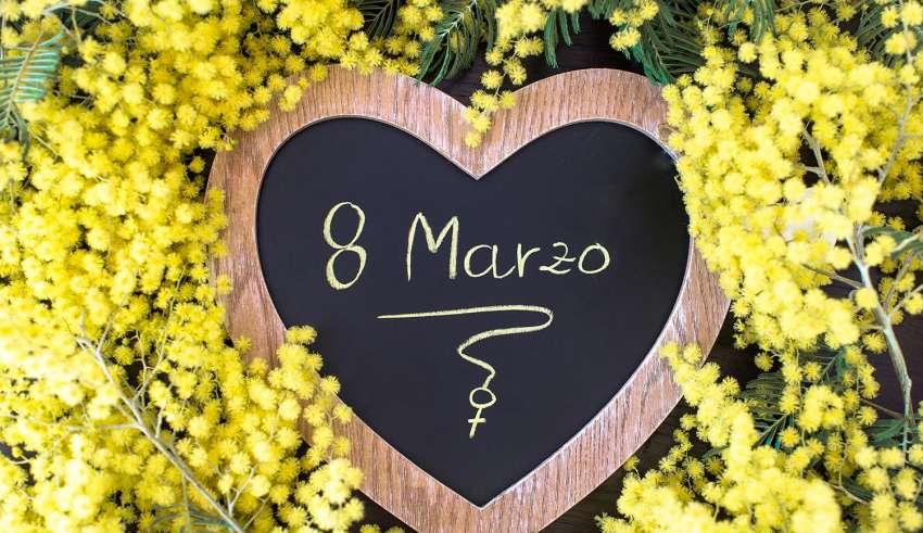 Le mimose, simbolo della festa della donna