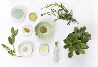Linea Botanika, prodotti naturali in esclusiva da MD